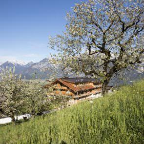 Blick auf den Pinzgerhof